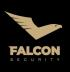 Falcon security, s.r.o.